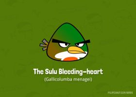 The Sulu Bleeding-heart by Filipeanuts
