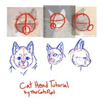 Cat Head Tutorial by TheCatsPupil