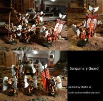 Blood Angels Sanguinary Guard   DDD vers. 1 by TheBl4ckCat