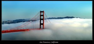 Wrapped in a Fog Blanket by the-shutterbug