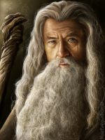Gandalf the Grey by NostalgiaBomb