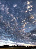 Clouds, again...V by digitalminded