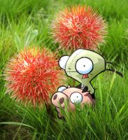 Gir and a red plant by Lerajie