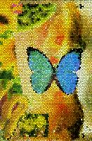 Butterfly stained glass by NitroFieja