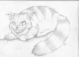 Cheshire cat by FlameEtain