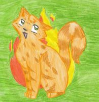 Spottedfire of Thunderclan by Chocobofanatic