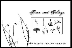 Trees and Foliage Brush Set by Arsenica-stock