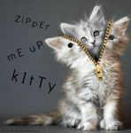 Zipper Me Up Kitty by Bits-Unbridled