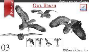 Owl Brush by dreamswoman