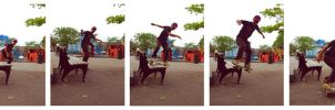 Boardslide by jannyjanjan