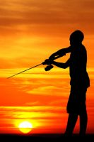 Violin Player by ahermin
