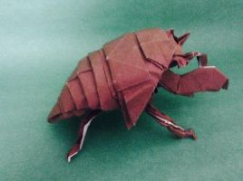 Origami Cicada Nymph by Origamilover462002