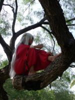Inuyasha Thoughts by vitainuka