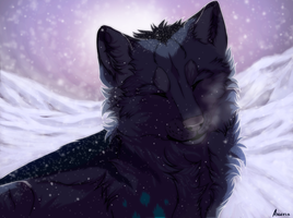 His first winter by Anerris