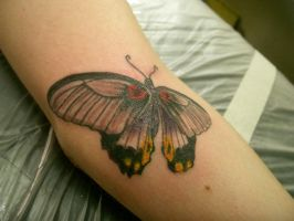 butterfly tattoo by micaeltattoo