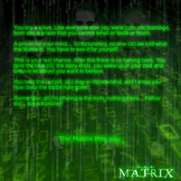 The Matrix Has you by P5yR3ap3r