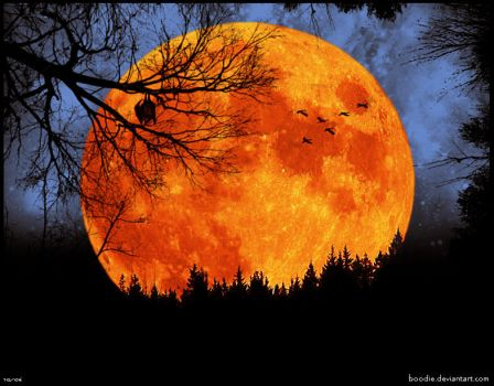 Harvest Moon by boodie