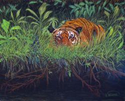 Jungle Tiger by RandyAinsworth