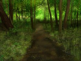 Into the emerald forest by Noire-Ighaan