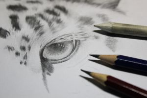 WIP - Snow Leopard by Michaela9