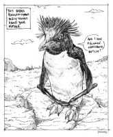 This badass penguin knows dirty things by KoreaRailroads
