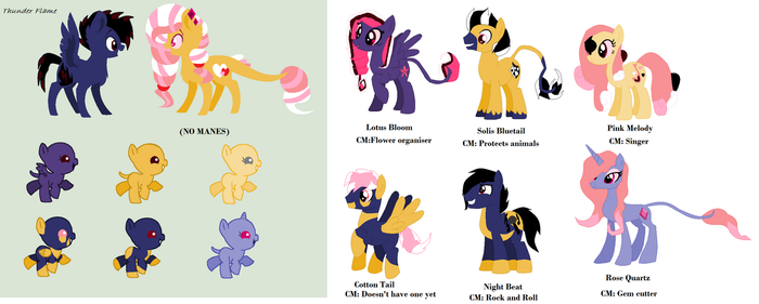 Breeding collab by wolflover4life008