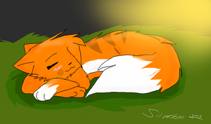 Firestorm .: Sweet Dreams :. by SilverKitti