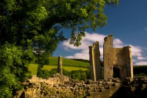 Edlingham Castle 7 by newcastlemale