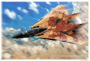Dutch Air Force  F-14 Tomcat over Africa by ghufranali