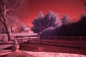 Infrared by BiOzZ