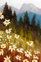 Daisies by DeLumine