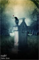 A Rose For The Dead by Ariel87