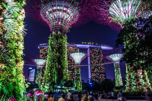 The Most Spectacular Light Show in the World by KML032
