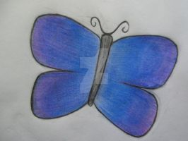 Butterfly Sketch by TheMelancholyArtist