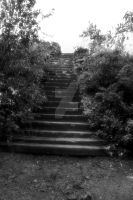 To the Witching ground BnW by divine-royalty