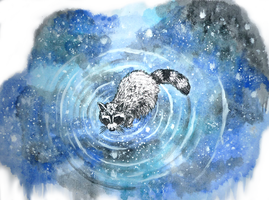 Raccoon and the Stars by Loroqueen