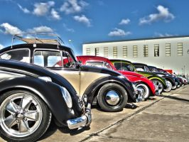 Volkswagen Beetles by ryn004