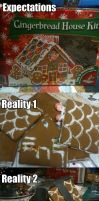 Expectations Vs Reality: Gingerbread House by NinjaFalcon90