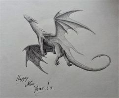 Happy New Year 2017 by umunschaas