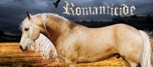 Romanticide - Clicky by HorseWhisperer101