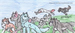 Pack Feild Day by 123-WolfGirl