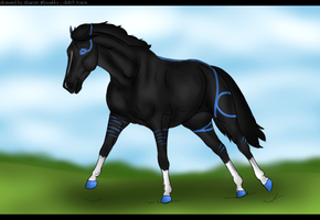 Our new horse by Esaqar