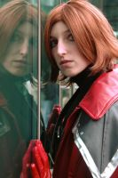 Through the Looking Glass by Vega-Sailor-Cosplay