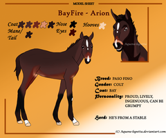Arion_Model sheet by Aquene-lupetta