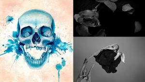 Skull and Roses by LtNathanHale