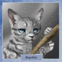 Jayfeather . Warriors by Romashik-arts