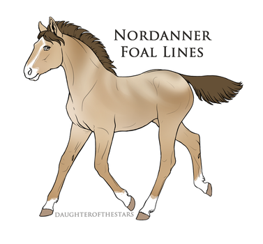 A5023 foal design by Seri-goyle