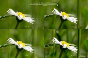Reversed Lense DOF by Youmitori