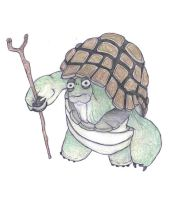 master oogway by remkop93