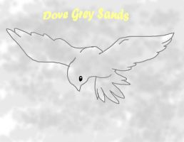 Dove Grey Sands by Hinami